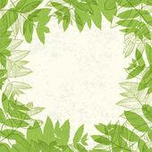 Green leaves frame on paper texture Vector illustration EPS10