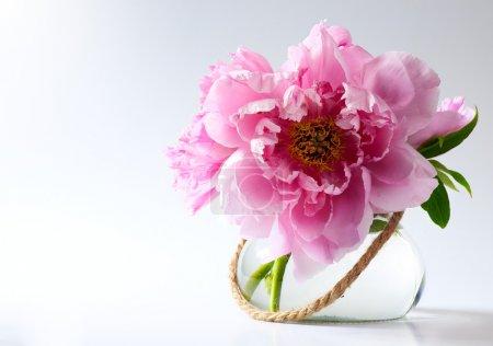 Foto de Flores de primavera en un jarrón sobre fondo blanco - Imagen libre de derechos