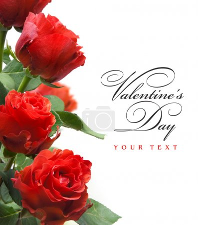Photo for Art valentines greeting card with red roses isolated on white background - Royalty Free Image