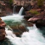 Turbulent waters of Saint Mary Falls at Glacier Na...