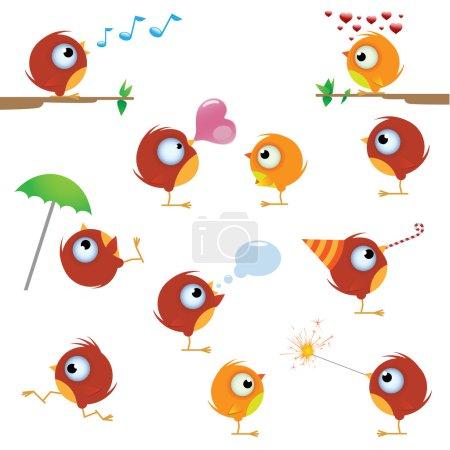 Canaries bird set