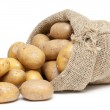 Potatoes in a burlap bag isolated on white backgro...