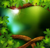 Vector background of the mystical mysterious forest with trees and leaves