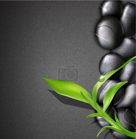 Vector background of a spa with stones, and a sprig of green bam
