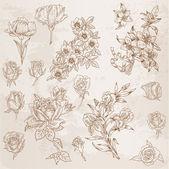 Detailní ručně kreslenou květin - pro scrapbook a design ve vektoru
