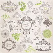 Vector Set: Calligraphic Design Elements and Page Decoration Vi
