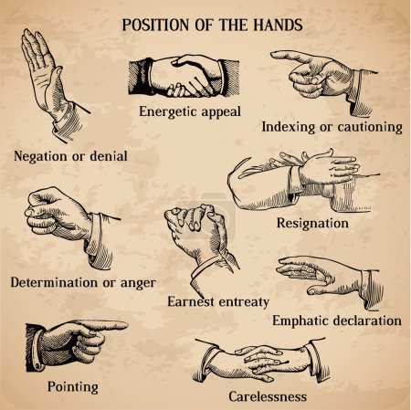 Illustration for Set of vintage hands - Various Positions in vector - High Quality - Royalty Free Image