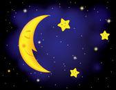Moonlight night