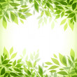 Abstract background with green sheet...