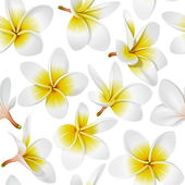 Frangipani (Plumeria) tropical flowers Seamless pattern background Vector illustration