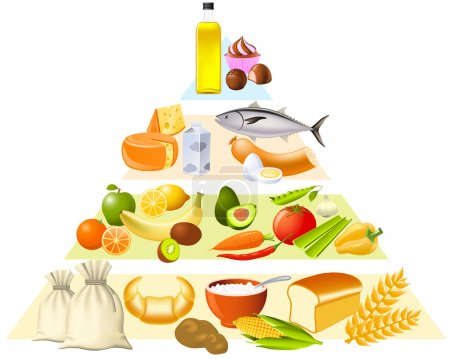 Illustration for Food pyramid set partly made with gradient mesh - Royalty Free Image