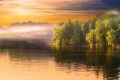 """Постер, картина, фотообои """"Ландшафт реки дымка"""""""
