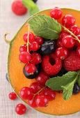 Meloun a bobulového ovoce