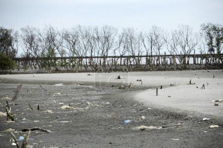 Photo pour Stock image de plage polluée - image libre de droit