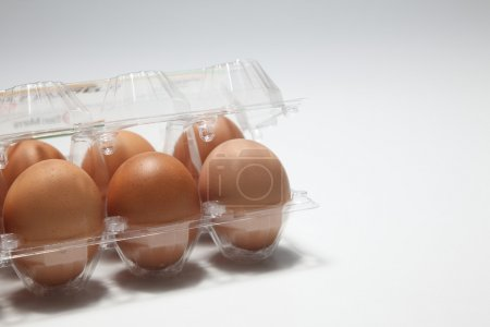 Photo for Close up of the tray of egg - Royalty Free Image