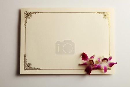 Photo pour Tir d'un modèle de certificat sur le fond Uni - image libre de droit