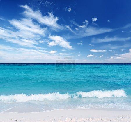 Photo pour Plage tropicale. Ciel bleu et eau claire . - image libre de droit