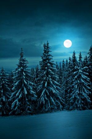 Photo pour Nuit bleue tranquille avec lune - image libre de droit