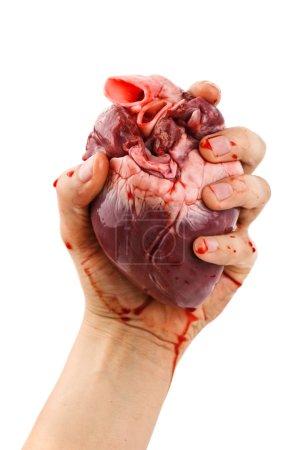 Photo pour Coeur en main isolé sur blanc - image libre de droit