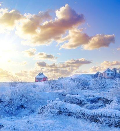 Foto de Paisaje de invierno con árboles y casas viejas - Imagen libre de derechos