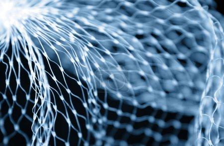 Closeup of netting
