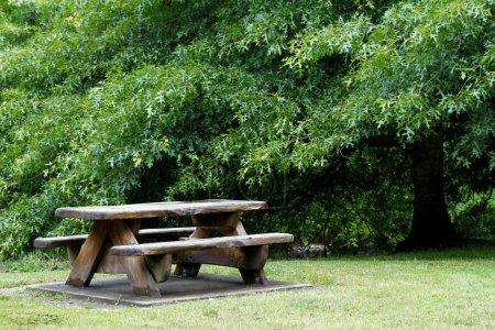 Foto de Mesa de picnic y árboles en el área de descanso - Imagen libre de derechos