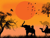 African safari theme vector illustration with camels and elephant on sunet background illustration