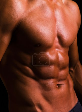 Photo for Torso of an athletic man on black background - Royalty Free Image