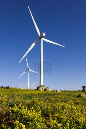 Beautiful lansdcape with wind turbines generating electricity