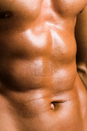 Photo for Close up of perfect male torso, bodybuilder's ABS - Royalty Free Image