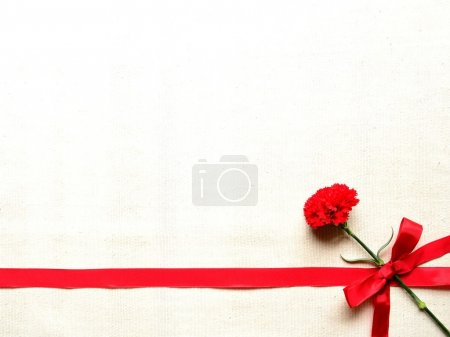 Red carnation with ribbon