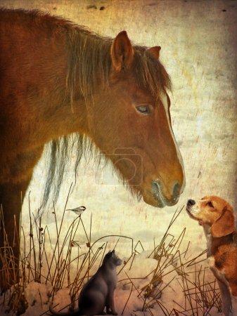 Photo pour Vieillissement de la photographie d'hiver avec un cheval, chien et chat - image libre de droit
