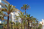Green palms, hotels and luxury apartments in Lloret de Mar, Spai