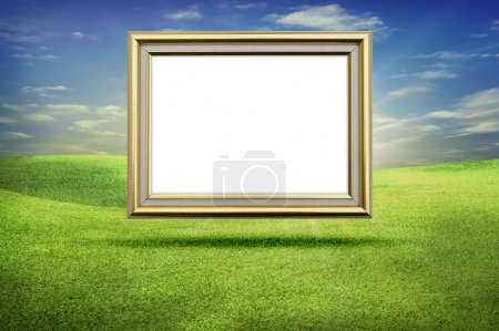 Gold frame grass sky