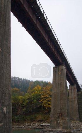 Photo pour Pont ferroviaire à travers la rivière de montagne (vue du bas ) - image libre de droit