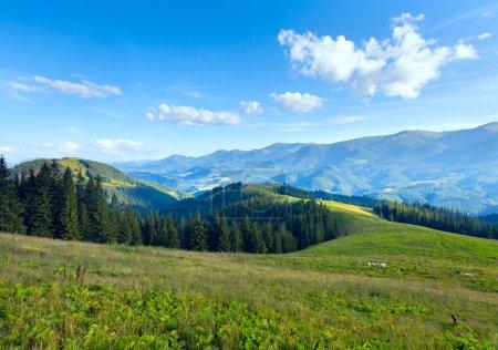 Paysage estival de plateau montagneux