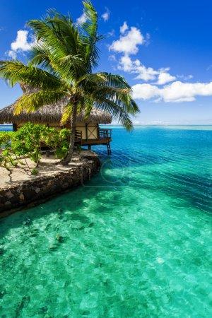 Tropical villa and palm tree next to green lagoon
