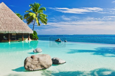 Infinity pool with palm tree overlooking ocean