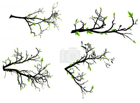 Illustration for Abstract Decor Design of Set of Autumn Branches - Royalty Free Image