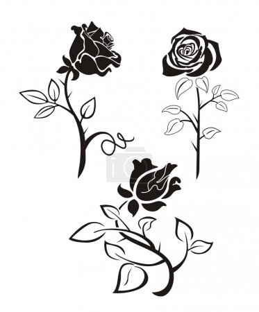 Illustration for Three black silhouette of roses on a white background - Royalty Free Image
