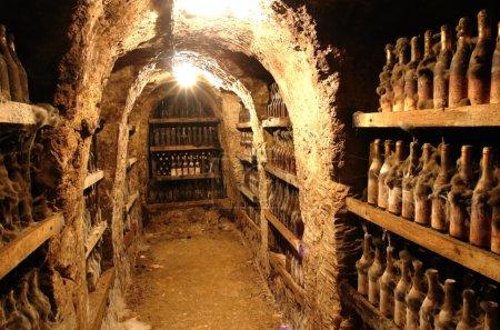 Photo pour Vieilles grottes et vin de la vallée de Tokai en Slovaquie . - image libre de droit