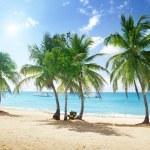Catalina island in Dominican republic...