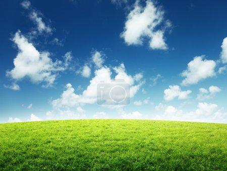 Photo pour Champ vert et journée ensoleillée - image libre de droit