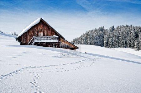 Photo pour Petite cabane en bois dans les Alpes autrichiennes en hiver - image libre de droit