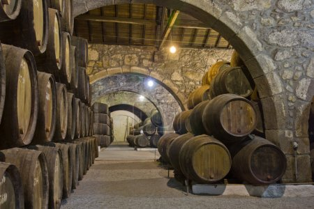 Cellar with wine barrels