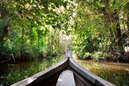 Boat in backwaters jungle