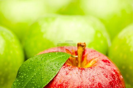 Fresh apple fruits close up...