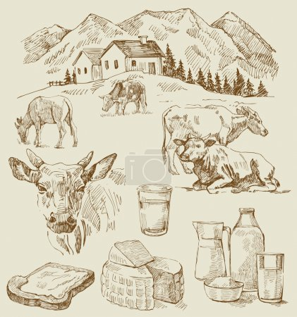 Illustration for Original hand drawn farm collection - Royalty Free Image