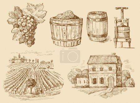 Illustration pour Vecteur vintage dessiné à la main de vin - image libre de droit