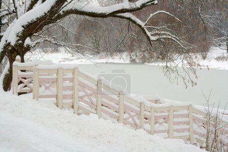 Winter landscape. Winter wood and lake covered wit...